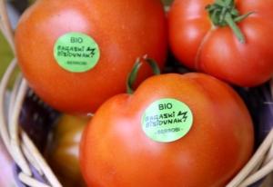 Tomateen pegatinak